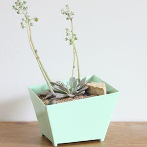planter thumb.jpg
