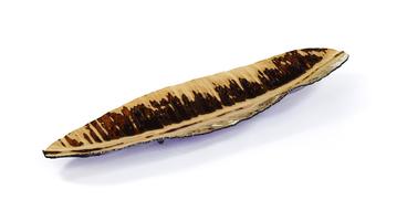 Glass Banana Leaf Home Accent