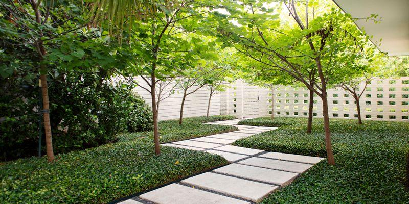 Las Palmas Campbell Landscape Architecture