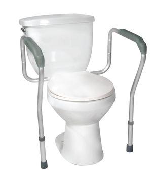 toilet.frame.jpg
