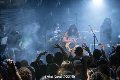 Tribal Seeds 1/22/13