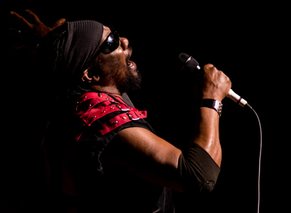 Toots and the Maytals - Live in Concert