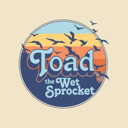 Toad The Wet Sprocket 2019 Logo MB.jpg