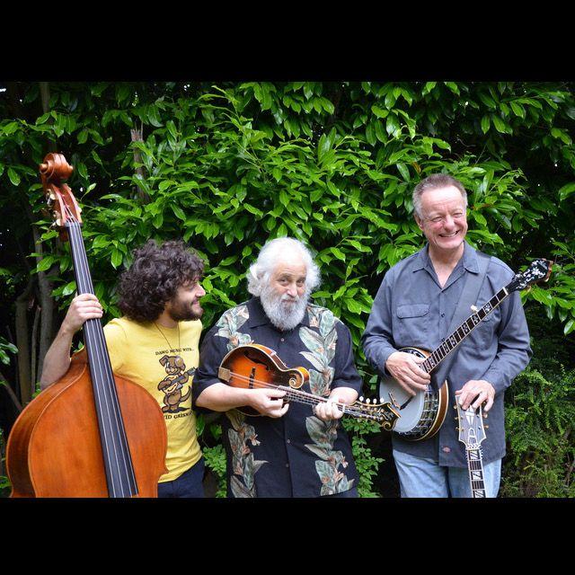 David Grisman Dawg Trio 2020 FGT.jpg