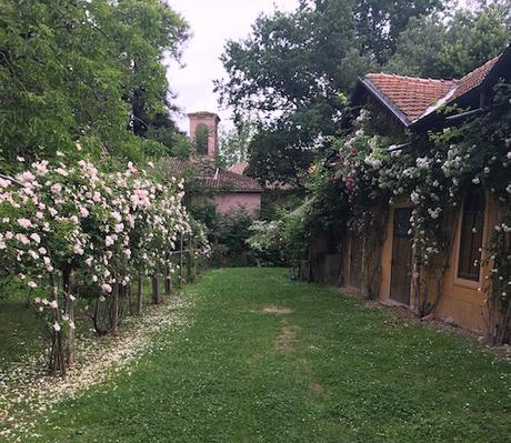 Il Borgo del Balsamico Garden