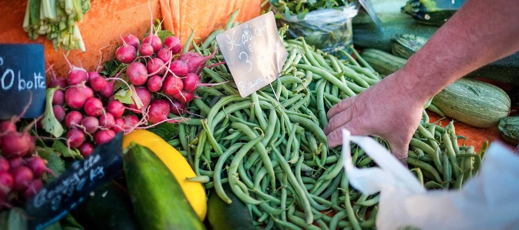 Fresh vegetables Farmers Market