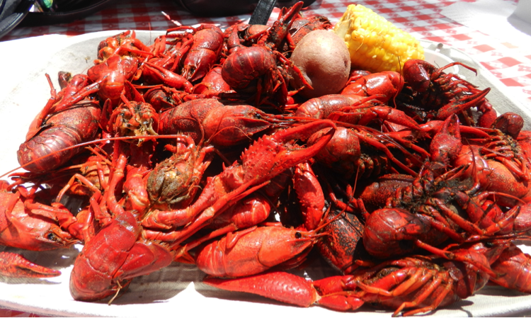 Boiled Crawfish Platter