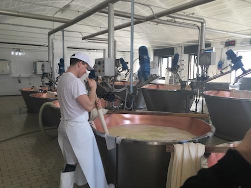 Churning Milk at Parmigiano-Reggiano