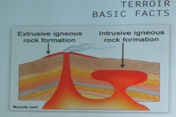 Terroir Basic facts.jpg