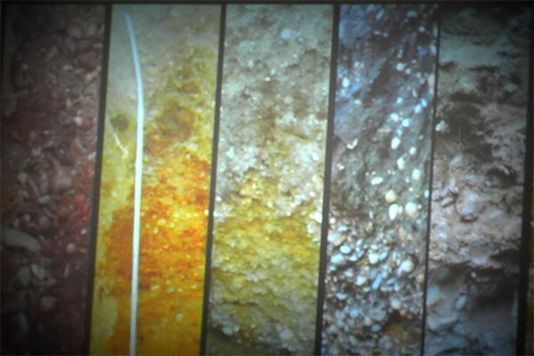 Five soils