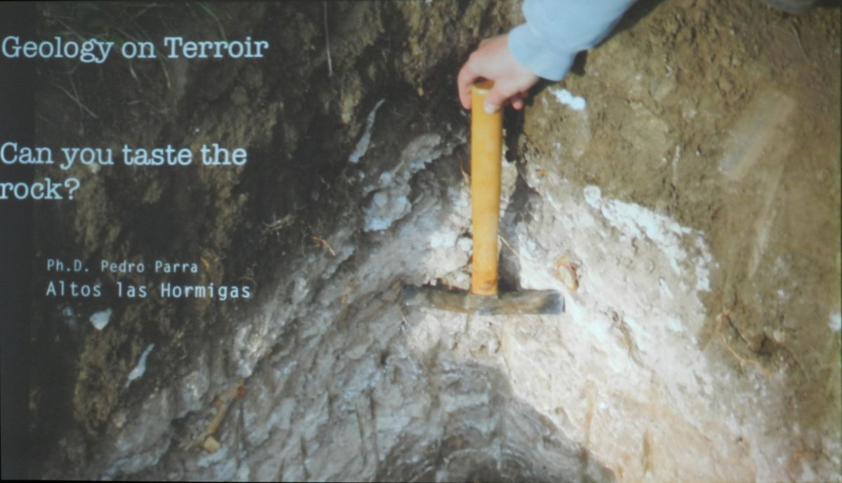 Geology on Terroir