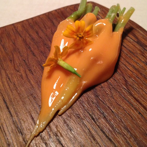Keeper Collection - Carrots & Their Smeared Flowers