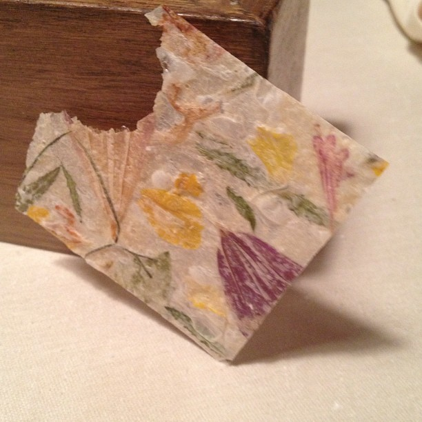 Keeper Collection - Dessert Paper made of Edible Leaves & Flowers