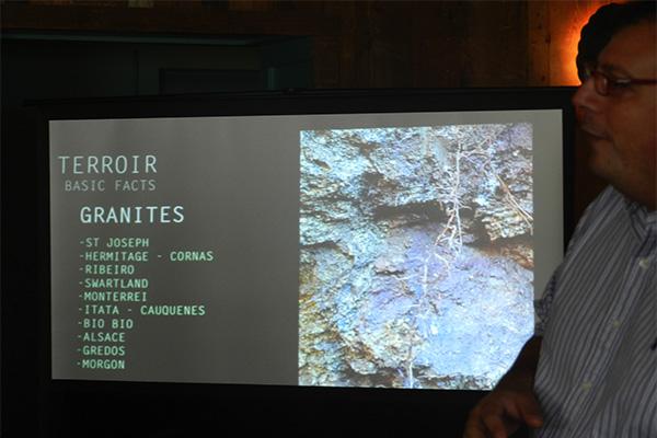 Granites Terroir Pedro Parra.jpg