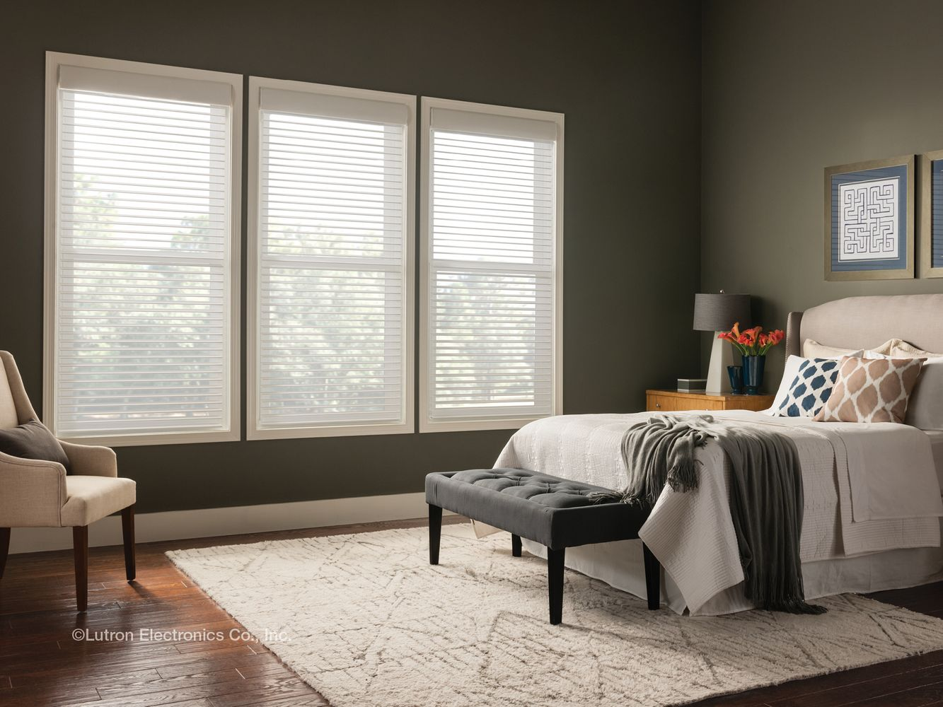 Lutron Smart Shades and Blinds Distributor, Smart Home