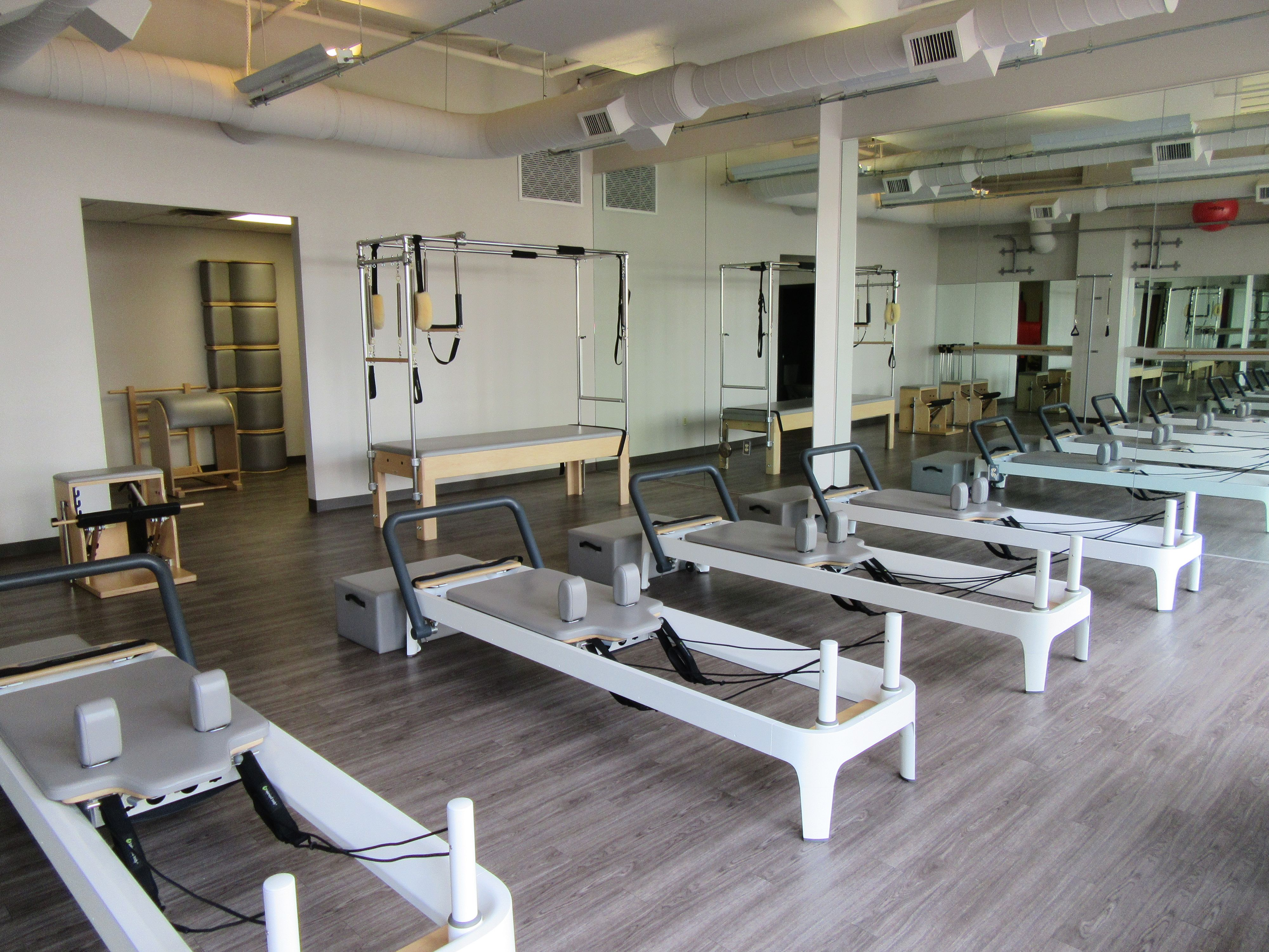 Bird Dog Pilates & Fitness Studio
