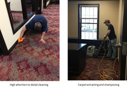 Detailed Carpet Cleaning
