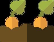 Carrots in Soil icon
