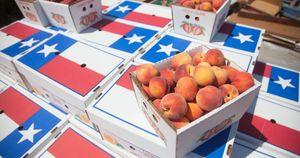 Texas Peaches