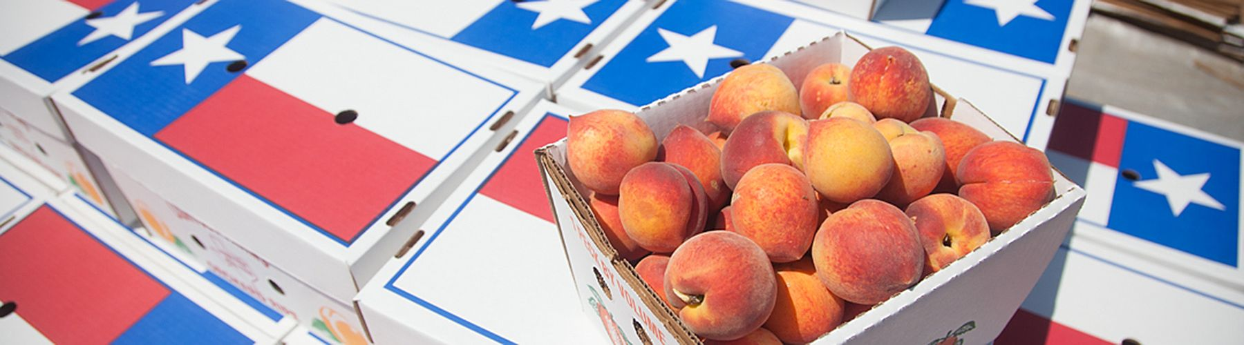 Peaches on Texas Box Web Banner.jpg