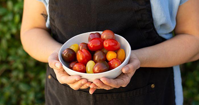2019-12 Hands Holding Bowl of Tomatoes IMG-01 WEBSITE.jpg