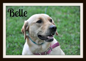 0915 Belle 4-14cvr.jpg