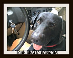 Hank-cvr.jpg