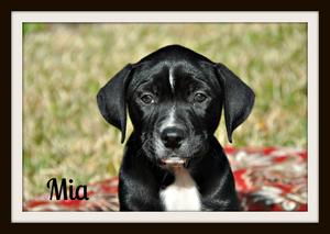 0480 Mia 1-14-1.jpg