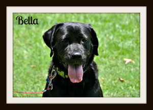 0036 Bella 6-13.jpg