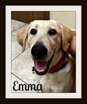 Emma6-20-1.jpg