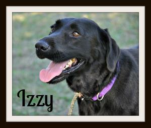 Izzy close sweet-1.jpg