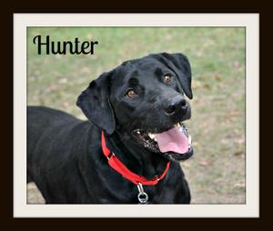 Hunter2cvr.jpg