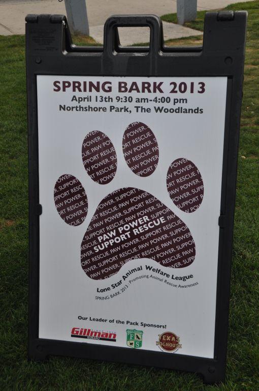 0233 spring bark 2013.jpg