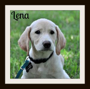 Lena-1.jpg