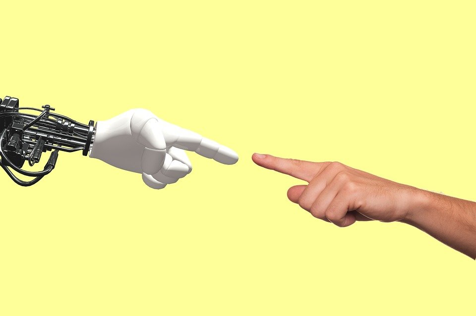 A robotic and a human hand