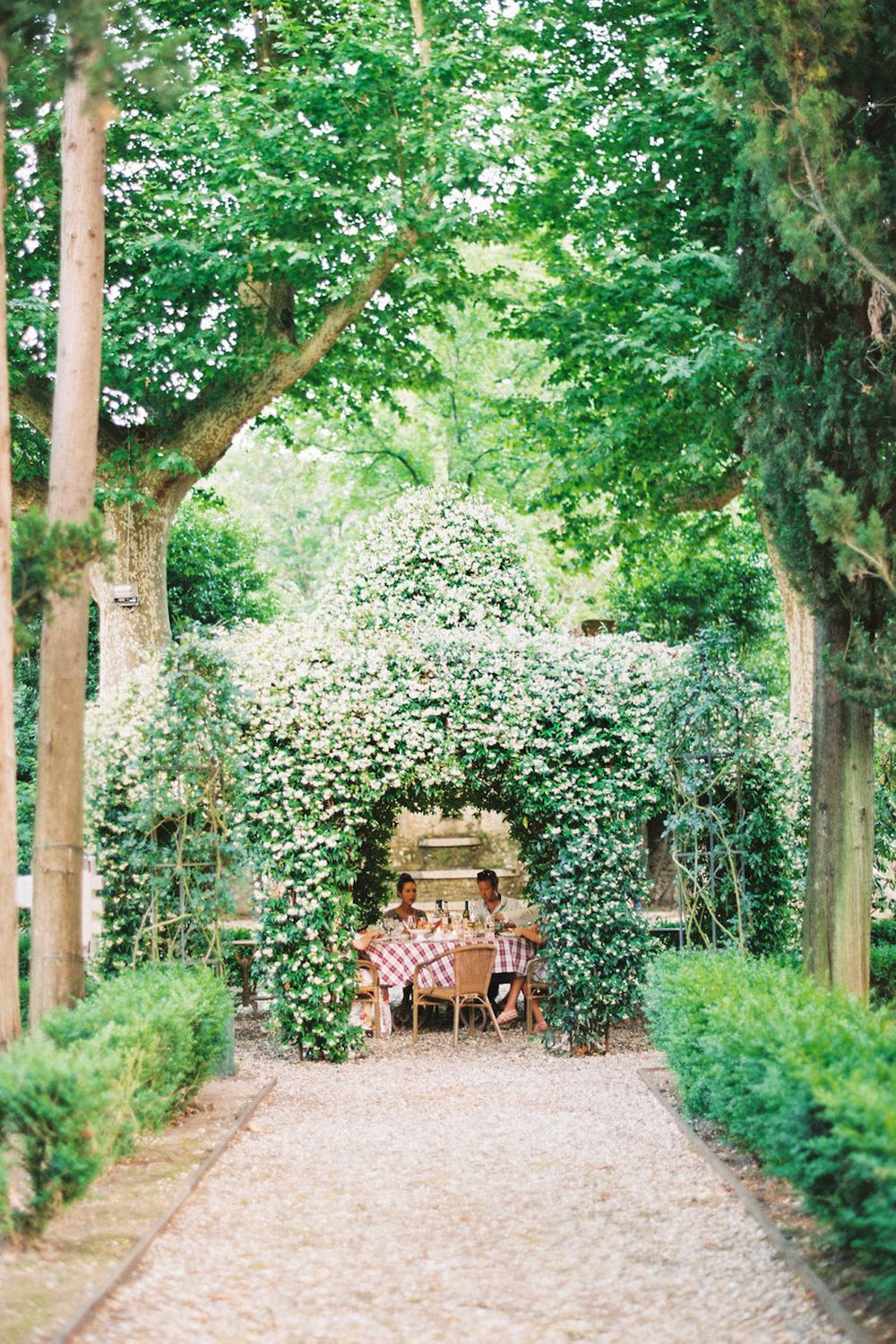jasmine covered gazebo