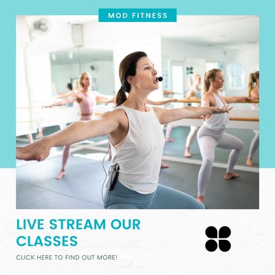 LEARN MORE ABOUT LIVE STREAMING OUR CLASSES