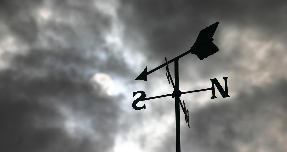 Weather Vane - Resized.jpg