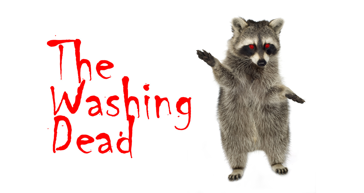 WashingDead.jpg