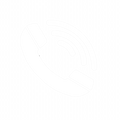 Contact Icon.png