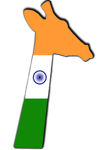 ghi-india.png