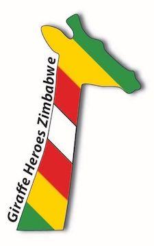 ZimbabweGiraffeheadSlantWS.jpeg