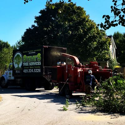 Chipping and hauling tree services
