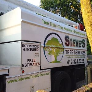 Heavy-duty tree removal service