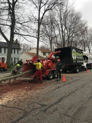 Chipping and hauling tree service