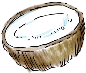 coconut2.png