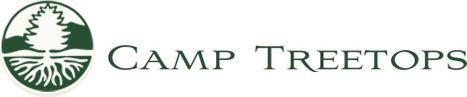 Camp Treetops.jpg