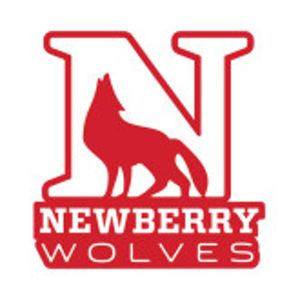 newberrylogo_large.jpg