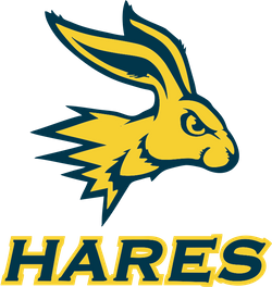 Golden Hares1.png