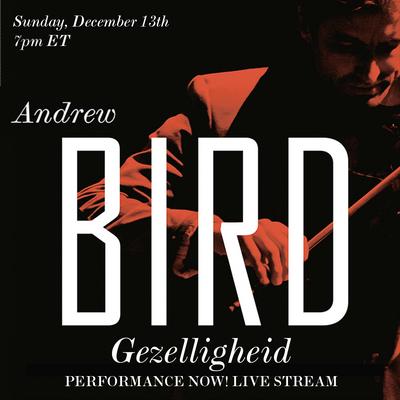 andrewbird sq.png